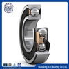 deep groove ball bearing 6304 ZZ 2RS NR in agricultural machinery