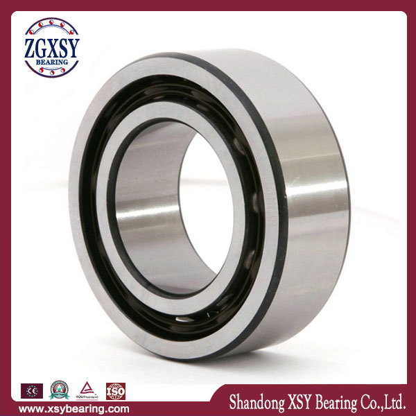 High Precision Angular Contact Ball Bearing 7915b 2CS Bearing Ceramic