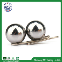 Zgxsy Stainless Steel Ball for Bearing in Stock