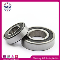 6004-2RS Deep Groove Ball Bearing Made in China