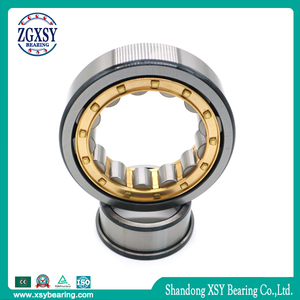 Double Column Integral Eccentric Cylindrical Roller Bearing